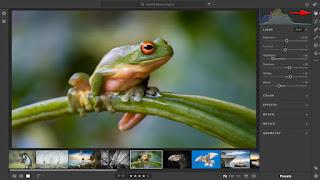 Lightroom Aplikasi Pilihan Yang Sangat Baik Untuk Fotografer