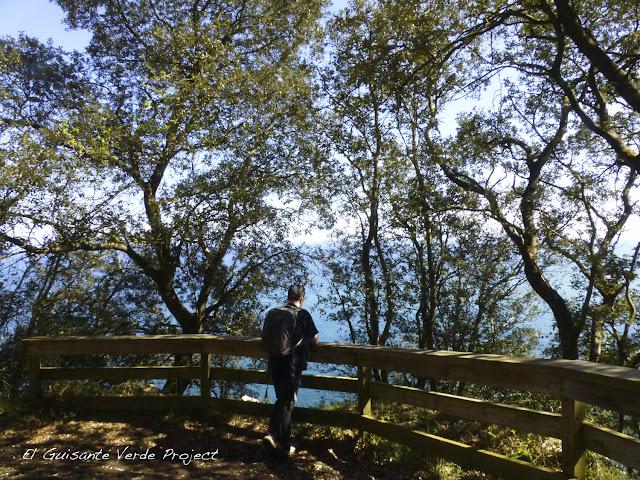 Mirador ruta al Faro del Caballo - Santoña, por El Guisante Verde Project