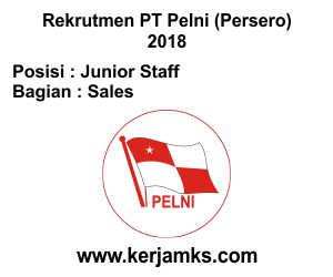Lowongan Kerja Sales - Junior Staff PT PELNI (Persero)