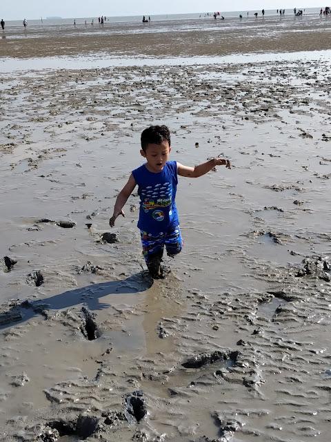 anak main lumpur di tengah laut surut pantai morib