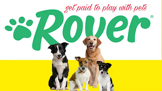Rover.com, get paid to play with pets, pets sitting, pets lover