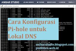 Cara lengkap dan mudah Konfigurasi Pi-hole untuk Lokal DNS | Anibar Studio