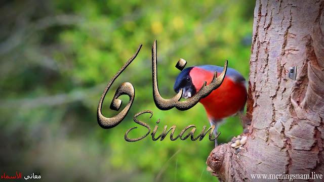 معنى اسم سنان وصفات حامل هذا الاسم Sinan