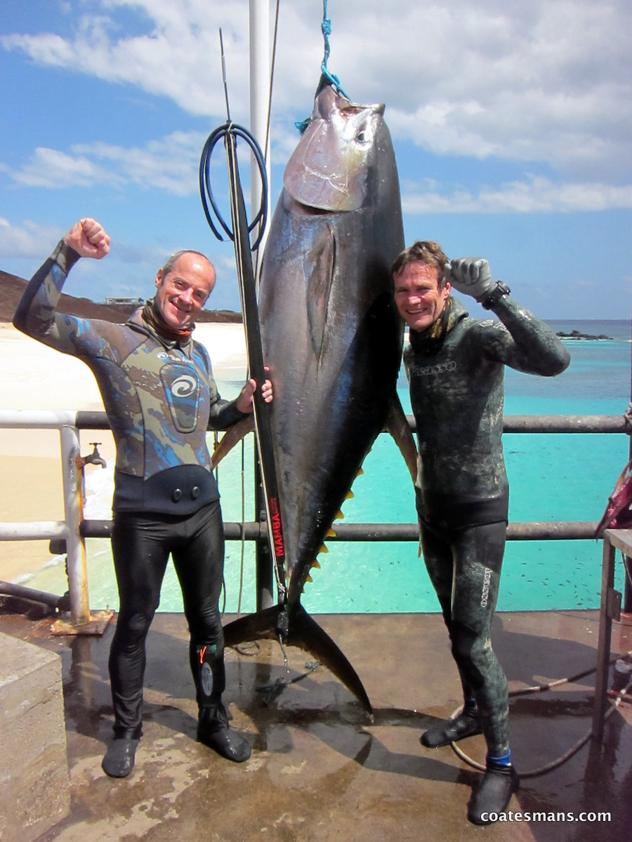Coatesman spearguns spearfishing ascension island for Fishing for tuna