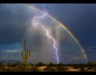 Monsoon storm with lightning, rainbow & saguaro in Tucson, Arizona.