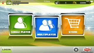 IPL Cricket Fever 2013 - screenshot 3