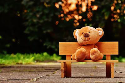 Lovely teddy bear photo for Whatsapp dp.
