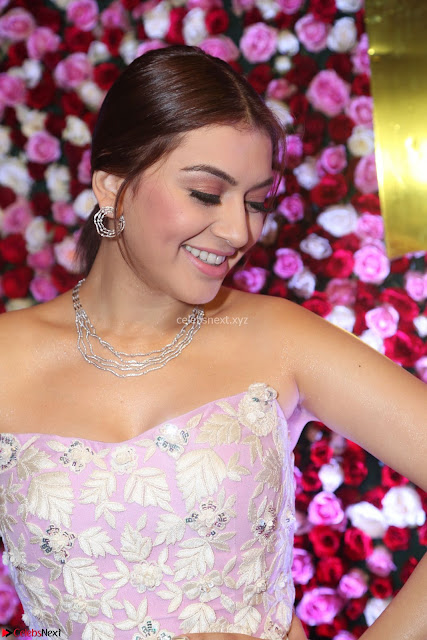 Hansika Motwani Sizzles in a Deep neck Sleevless Pink Gown at Zee Telugu Apsara Awards 2017 06.JPG
