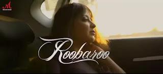 ROOBAROO LYRICS - VIPUL MEHTA