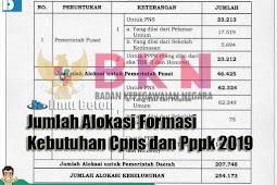 Jumlah Alokasi Formasi Kebutuhan Cpns dan Pppk 2019