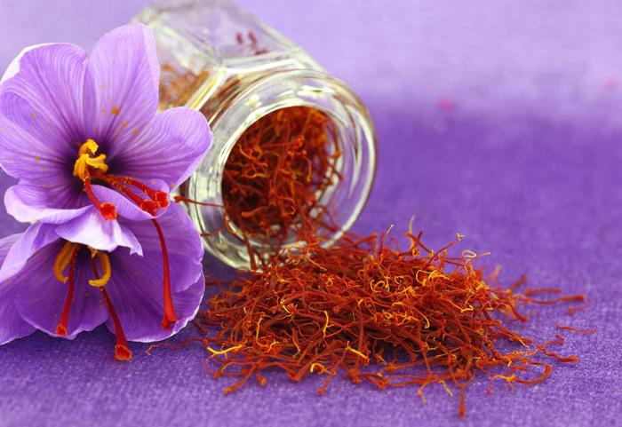Jual bunga Saffron asli