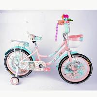 16 bnb 04 ctb sepeda anak