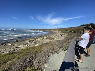 viewers at Piedras Blancas Elephant Seal Rookery overlook in San Simeon, California
