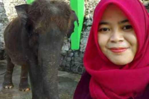 dipijak gajah, gambar wanita dipijak gajah, selfie bersama gajah