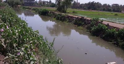 """""""الري"""" تواجه التعديات على النيل وموسم اقصى الاحتياجات المائية.. وتعلن الطوارئ (صور)"""