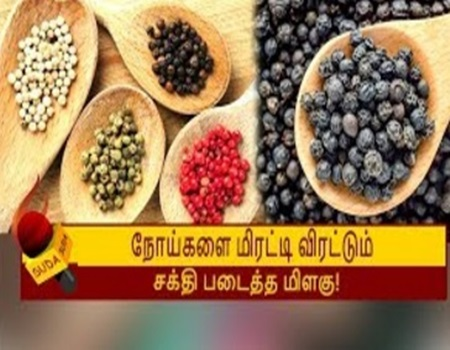 Benefits of black pepper piper nigrum