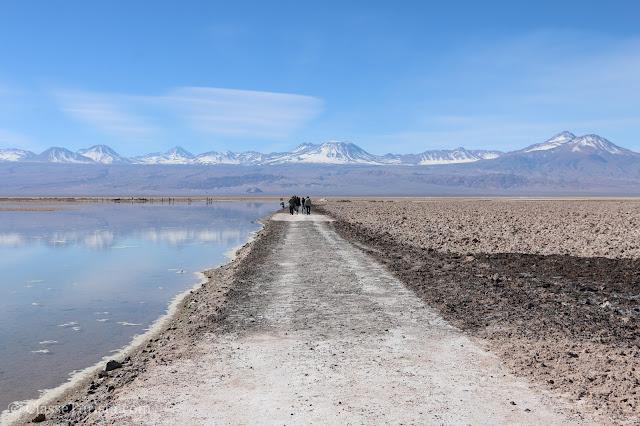 Laguna Chaxa - Reserva Nacional dos Flamingos