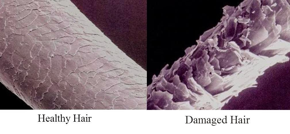 There are four main causes of hair damage. There are also ways to prevent them. See how at arelaxedgal.com
