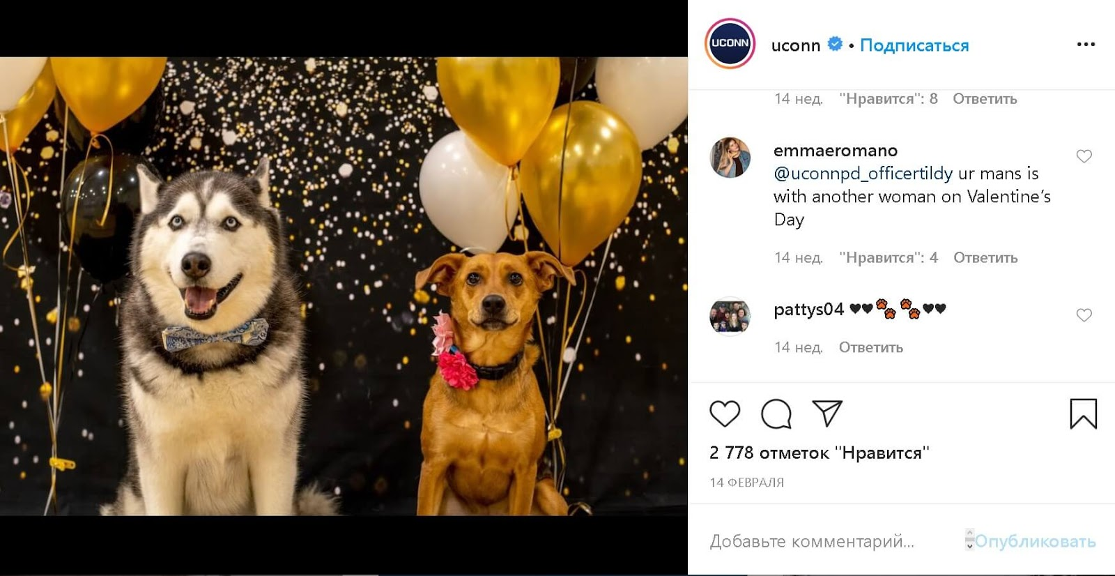 instagram-the-university-of-connecticut-husky-jonathan