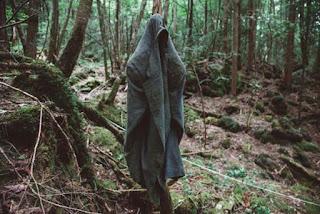 tempat bunuh diri di Hutan Aokigahara / Catatanadi.com