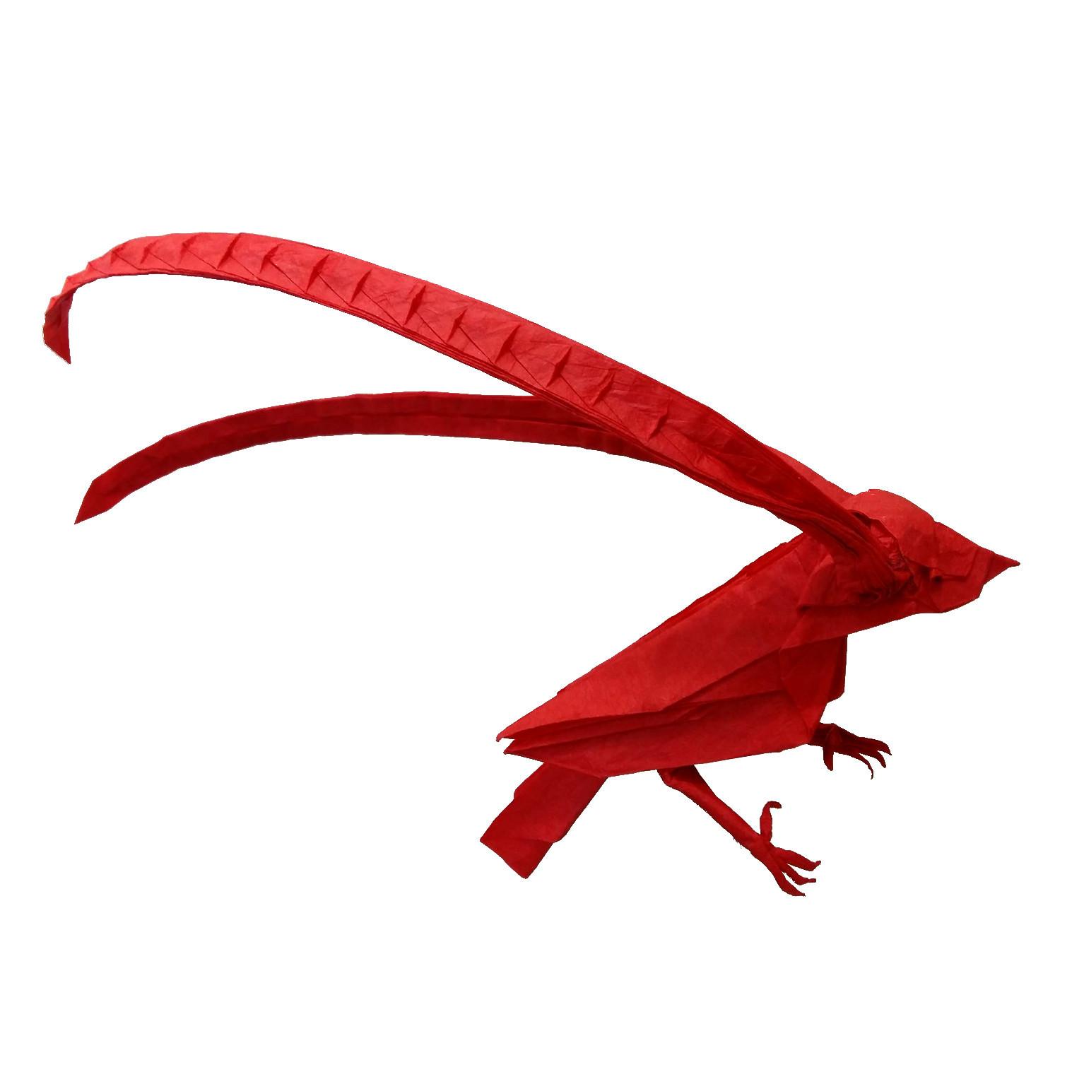 king-of-saxony-bird-of-paradise-origami