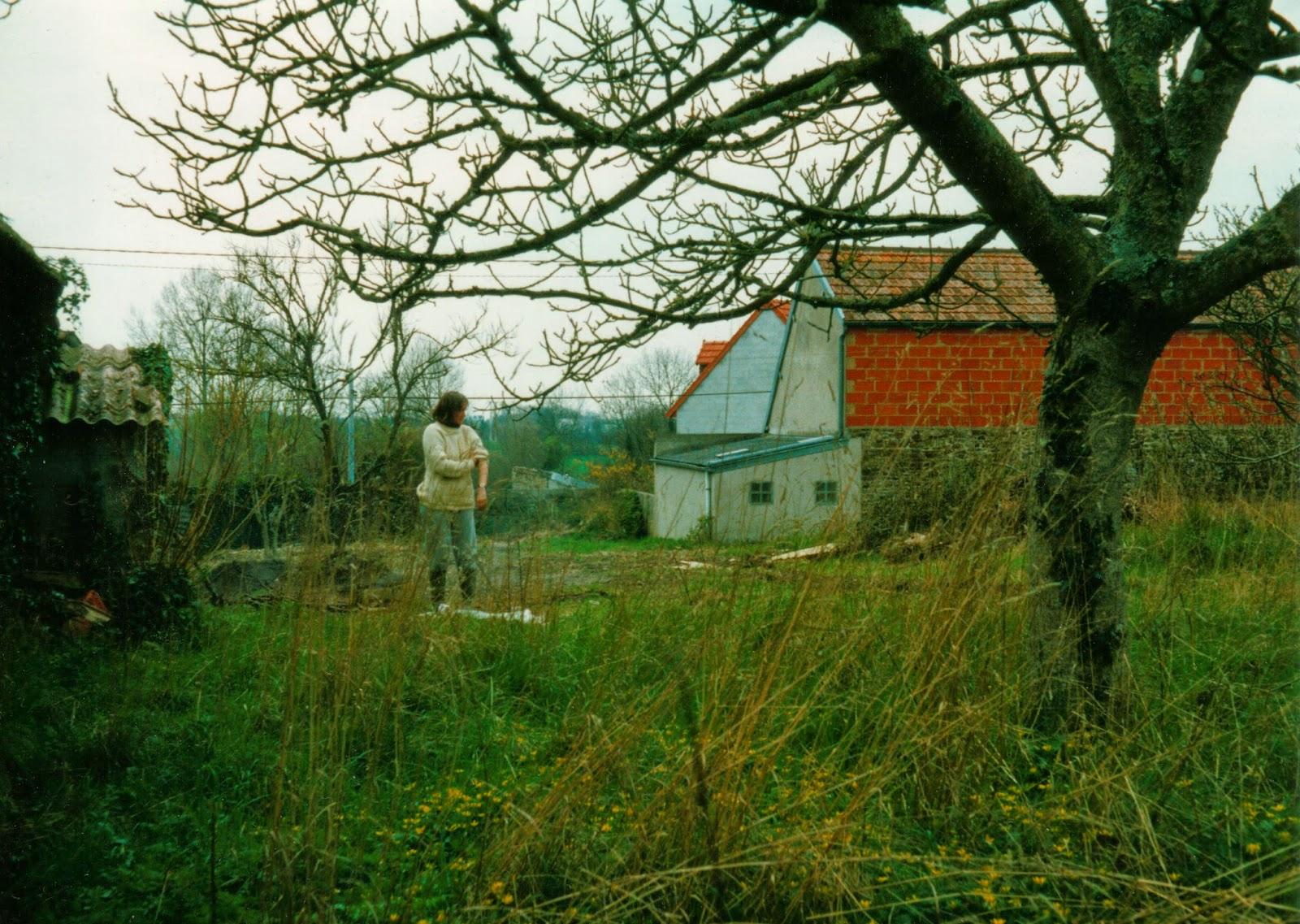 Planning a forest garden