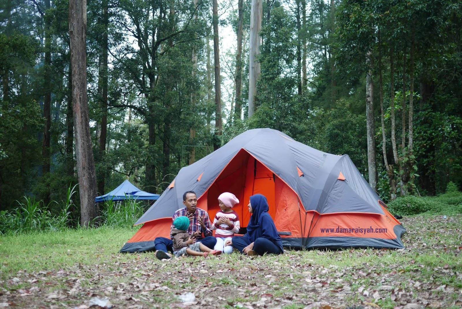 Mojosemi Forest Park Wisata Alam Di Ujung Barat Kota