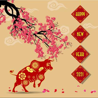 TỐNG CANH TÝ NGHÊNH TÂN SỬU Hinh-nen-chuc-mung-nam-moi-2021