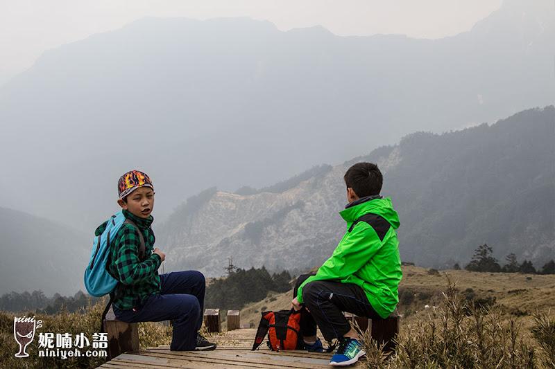 【南投景點】合歡山步道路線必讀指南。教你一次完成雙百岳