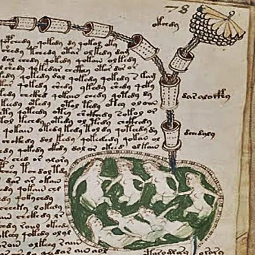 mysterious books in hindi - voynich manuscript in hindi