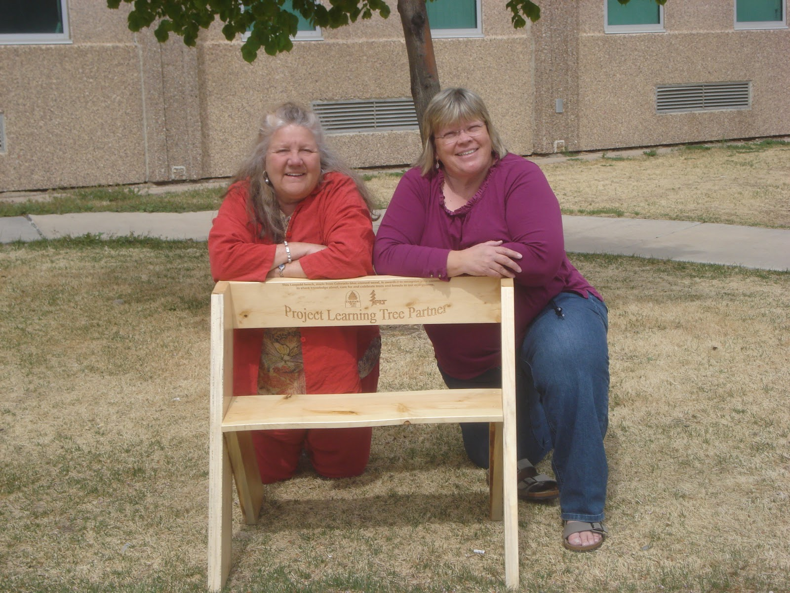 Plt Recognition And Appreciation Benches