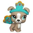Littlest Pet Shop Pet Pairs Boxer (#1463) Pet