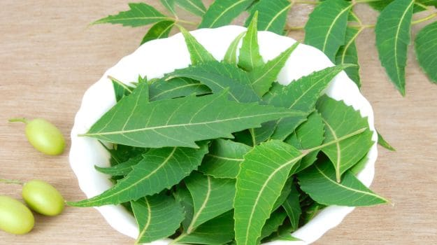 TOP 10 HOME REMEDIES To CURE SKIN ALLERGIES NATURALLY
