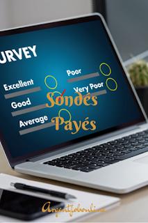 Sondés gagnants, sondages en ligne, argent web