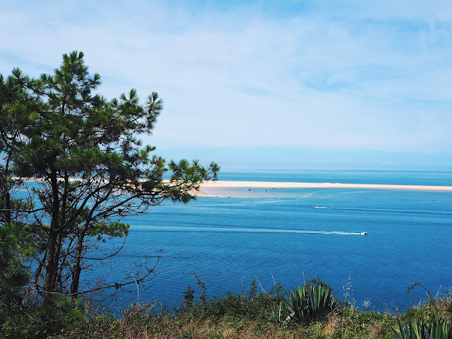 photographie nature bassin arcachon banc d arguin dune pyla
