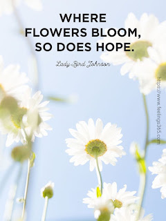 The Beauty of Flowers Quotes