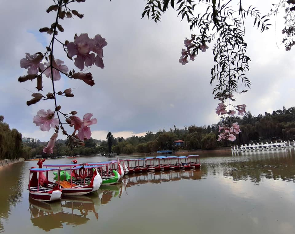 Baguio City tourism hard hit by COVID-19 pandemic.