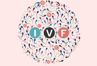 What is IVF Treatment, How much Cost, know full detail