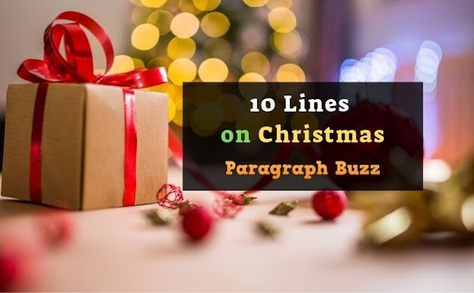 10 Lines on Christmas in English for Students