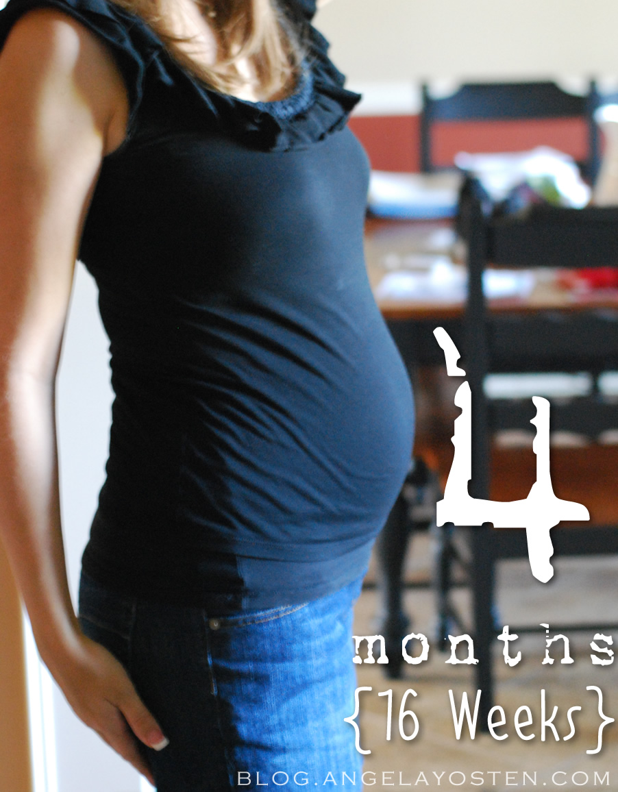 Feel Pregnant 4 U Months What Can