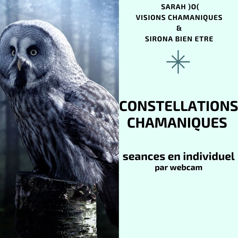 [NEW] Constellations Chamaniques en individuel
