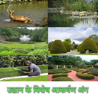 उद्यान के विशेष आकर्षण अंग हिन्दी में Special Attractions of the Garden in hindi