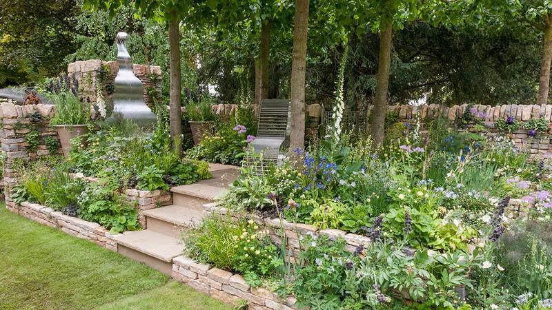 jardin terrazas de muro de piedra seca y plantas