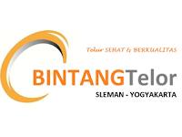 Lowongan Kerja Staff Admin Accounting di Bintang Telor - Yogyakarta