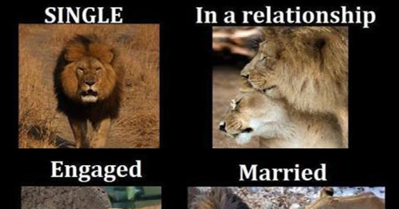 16 Funny Pictures Of The Startling Differences Between Single And Married Life