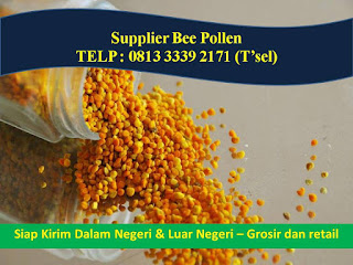 Jual Bee Pollen Malang, TELP. 0821 3299 4953, Jual Bee Pollen Murah Malang