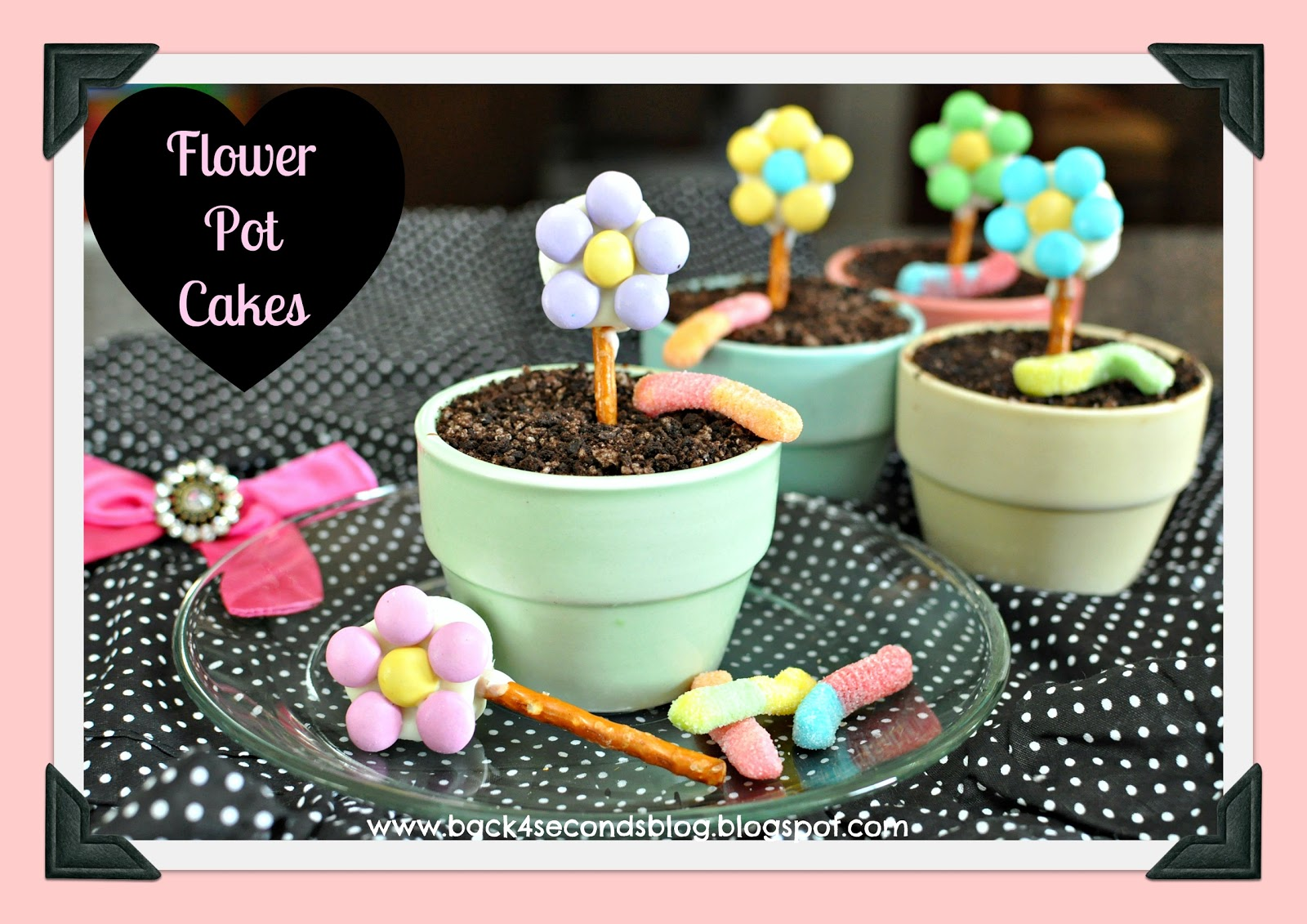 Come Home To Mama Chocolate Cake Recipe: Back For Seconds: Flower Pot Cakes