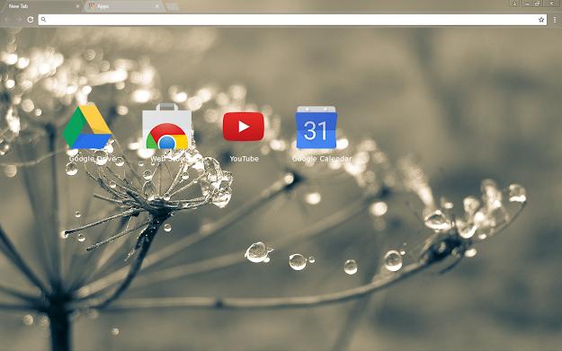 Cobweb Chrome Theme