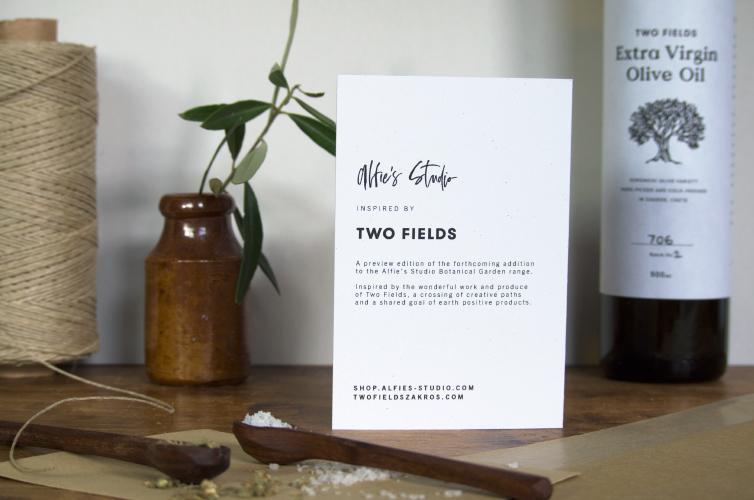 Two Fields Zakros - Alfie's Studio