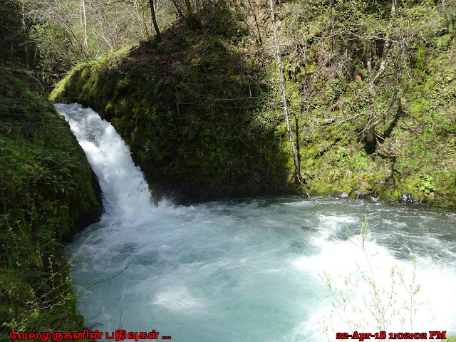 Washington Buck Creek Falls